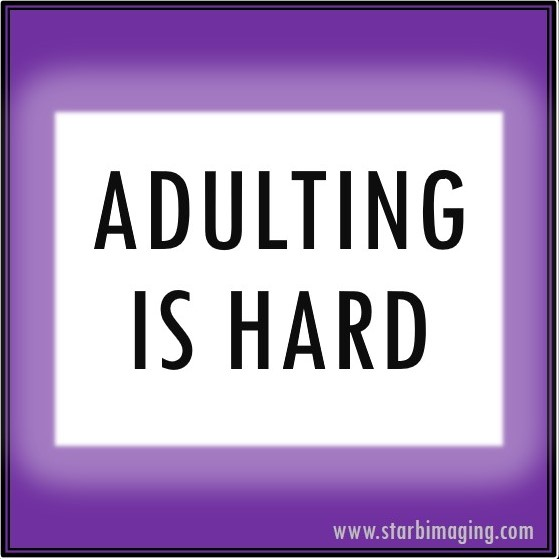 AdultingIsHard-meme